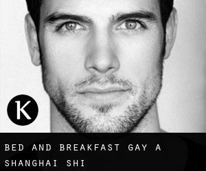 Bed and Breakfast Gay a Shanghai Shi