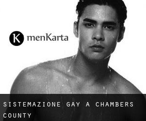 Sistemazione Gay a Chambers County
