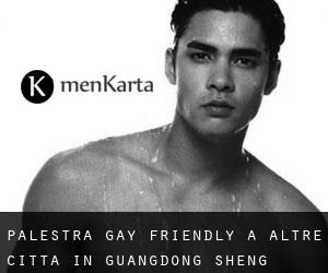 Palestra Gay Friendly a Altre città in Guangdong Sheng