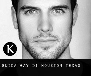 Guida Gay di Houston (Texas)
